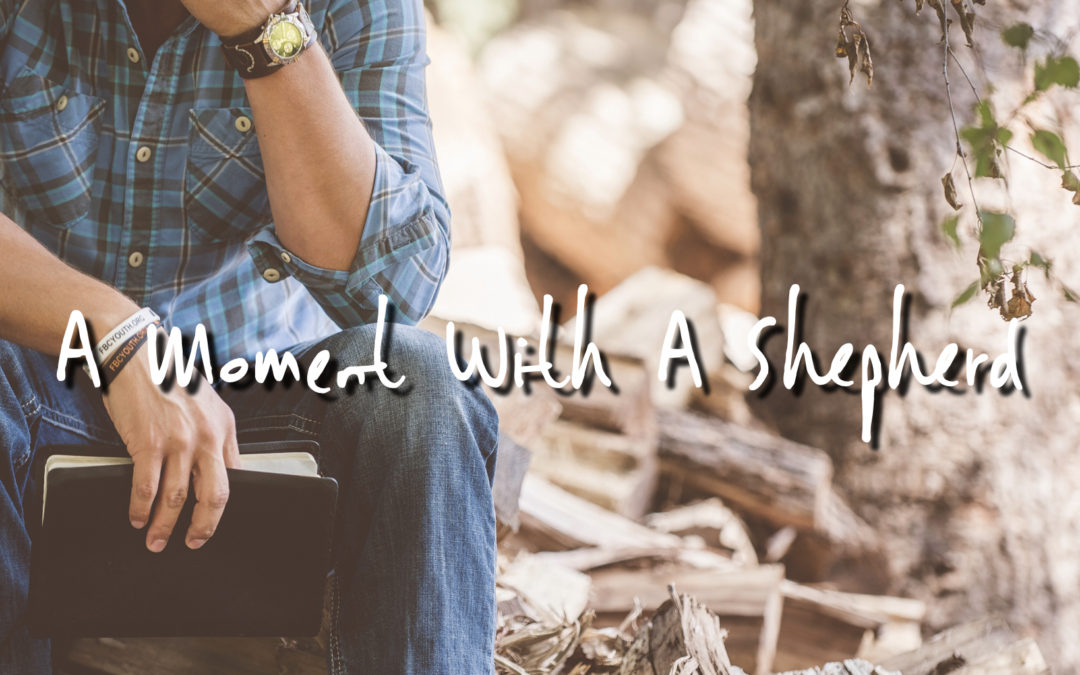 A Moment With A Shepherd: This Is Us