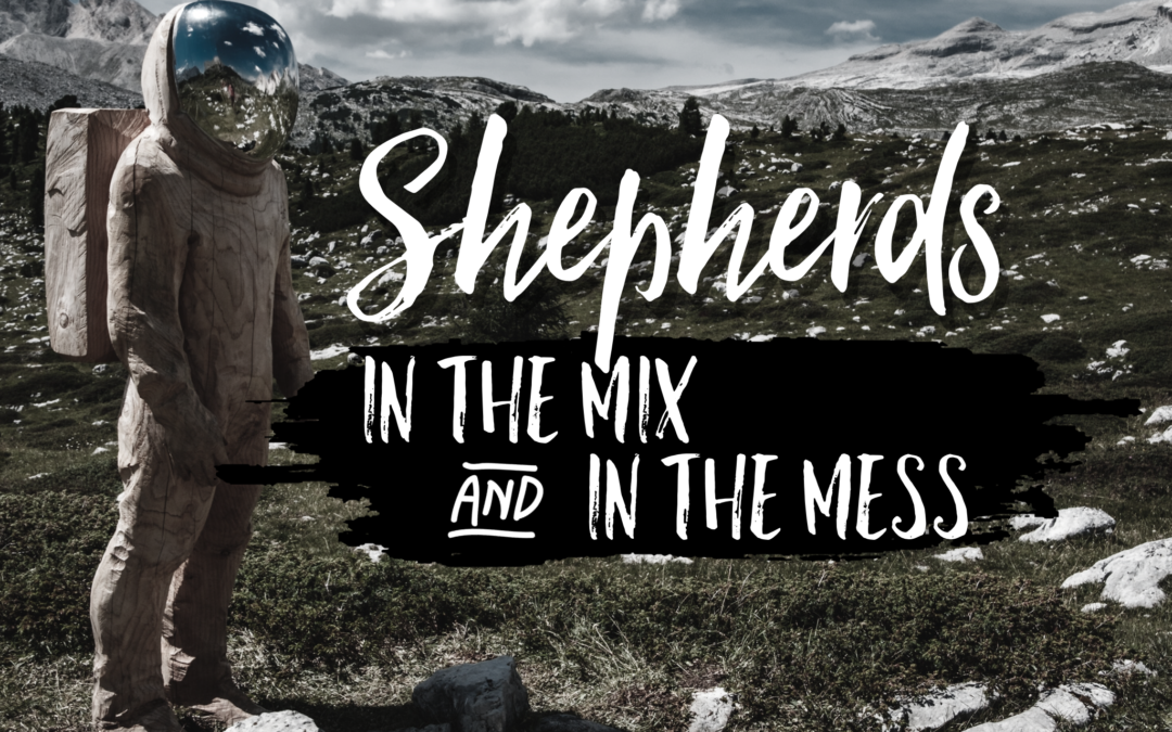 Shepherds In the Mix And In the Mess